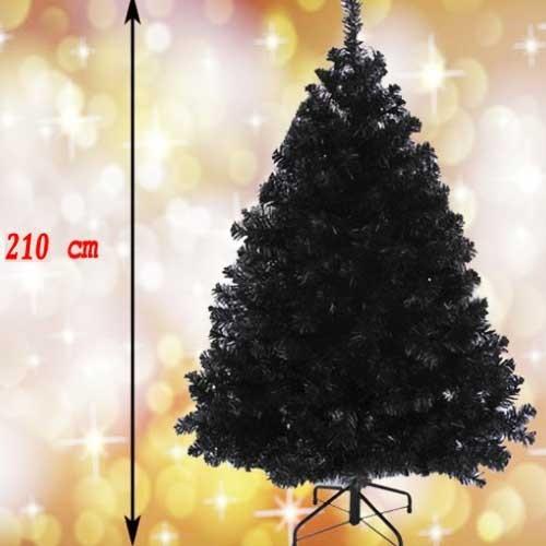 Crna novogodišnja jelka Wonder Black 210  cm