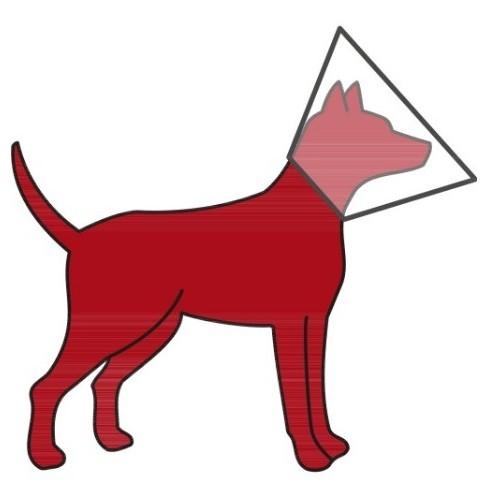 Zaštitna kragna za psa sa čičak trakom 44-53 cm