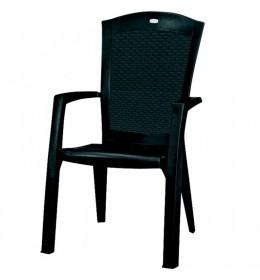 Baštenska stolica Minesota grafit