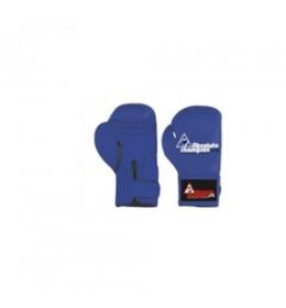 Dečije rukavice za boks ACH 4OZ