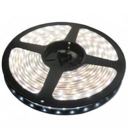 LED traka dnevno svetlo 60 LED / 1m LTR5050/60W-12S