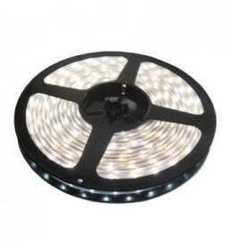 LED traka dnevno svetlo 60 LED / 1m LTR3528/60W-12H
