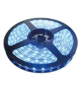 LED traka plava 60 LED / 1m LTR3528/60B-12
