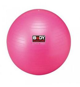Lopta za pilates 55cm BB-001