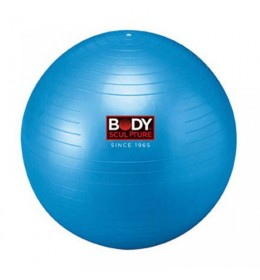Lopta za pilates 65cm BB-001 blue
