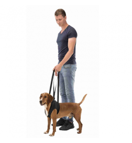 Pojas za pomoć pri kretanju psa Walking Aid do 25 kg