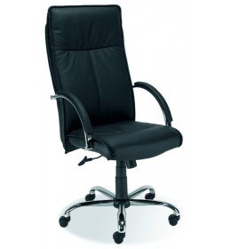 Radna stolica Neo lux