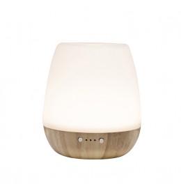 Stona ultrazvučna aroma lampa Home AD20