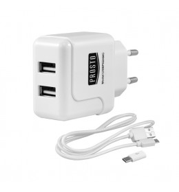 Univerzalni USB punjač 2A