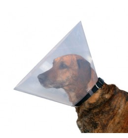 Zaštitna kragna za psa dimenzija 22-25 cm / 7 cm