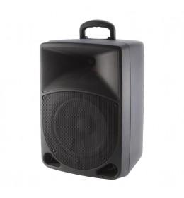 Zvučna kutija sa akumulatorom 120W PAB20A